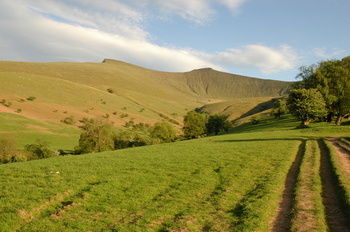 penyfan +cartracks