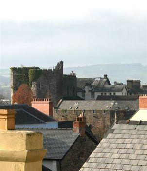 castle  roofs 3small.jpg